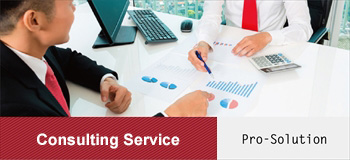 Consulting Service